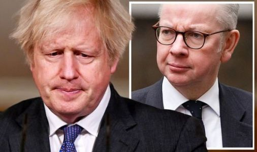 Michael Gove and Boris Johnson suffer brutal attack on Brexit promise 'It's untrue!'