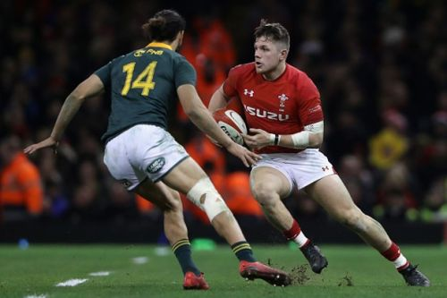 'Rugby is the new boxing': why rugby is the new bad boy of sport