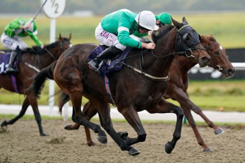 Fast horse racing results: Who won the 3.15 at Lingfield live on ITV?