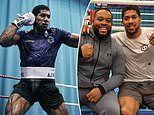 Anthony Joshua has 'floored' several sparring partners ahead of Andy Ruiz Jnr rematch