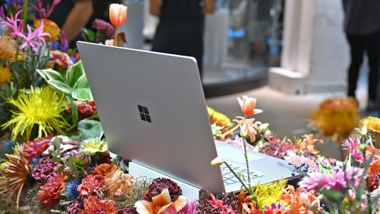 Microsoft May Release a Cheaper Surface Laptop This Fall