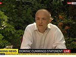 Dominic Cummings delivers statement in Downing Street Rose Garden