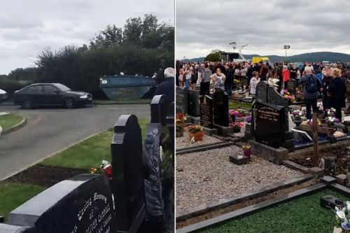 Car ploughs into crowds at cemetery leaving several pedestrians injured