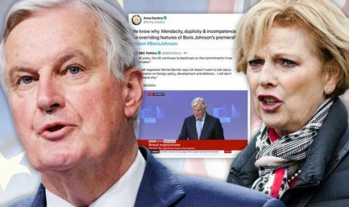'Childish' Anna Soubry sparks backlash as Remainer chips in after Barnier's Brexit speech