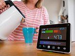 The Smart Meter snoopers already in homes tracking our energy habits