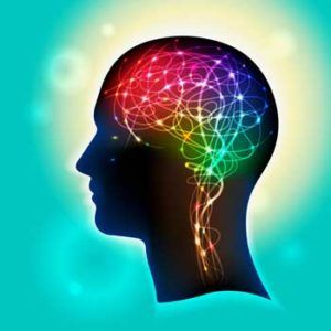 Brains on Fire, Swollen Brains, Toxins and Neuroinflammation - by Dr. Mary Ackerley