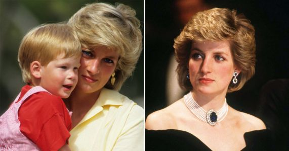 Harry says Princess Diana would be 'sad and angry about how this has panned out'