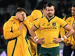 Bledisloe Cup misery deepens for Australia as the All Blacks demolish Wallabies in a 36-0 whitewash