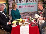 Vet warns owners against feeding their dogs mince pies, chocolates and gravy