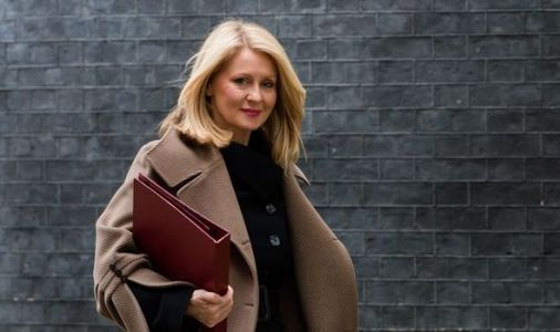 Esther McVey: How Zoom culture has brought wave of vanity to Britain