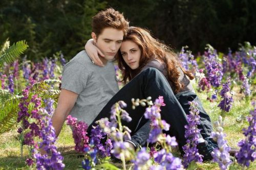 Where the cast of Twilight is now as new book Midnight Sun is released