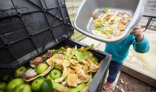 UK throws away £16bn of food each year as millions go hungry