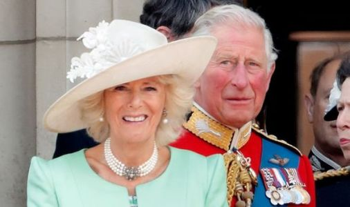 Prince Charles and Camilla reveal new plan to boost popularity with social media expert