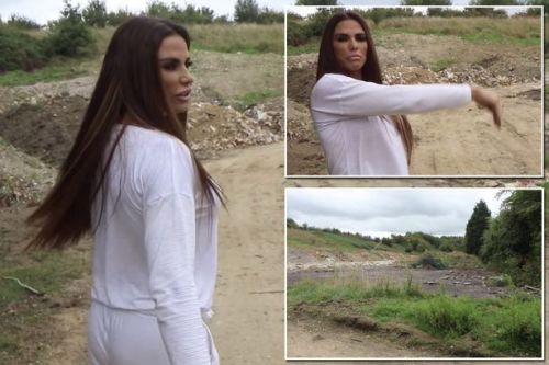 Katie Price moving out of messy mansion by building new home in garden