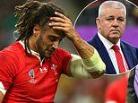 Wales forward Josh Navidi's Rugby World Cup is over after injuring his hamstring against France