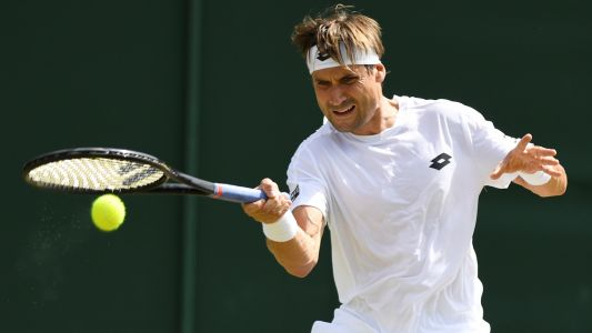 ATP Miami Day Six Preview: Resurgent veteran Ferrer can keep his run going