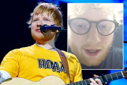 Ed Sheeran forced to cancel show at Disneyland and leaves fans in rain for hours
