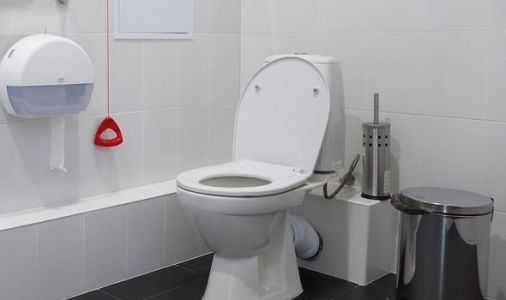 Scientists develop 'Smart Toilet' that detects 10 different types of diseases
