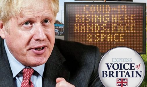 Don't do it Boris! PM warned not to put UK into nationwide lockdown - 'They don't work!'