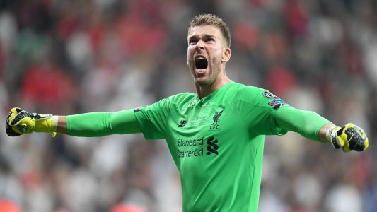 Sports shorts: Liverpool keeper injured by fan, Murray focuses on singles return