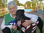Greyhound trainer Karen Leek, 69, is found dead in Devon Meadows, in Melbourne's south-east