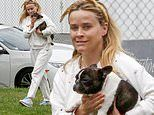 Reese Witherspoon keeps it casual in sweats as she carries beloved Frenchie Minnie Pearl in LA