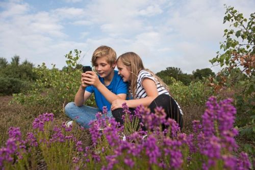 Parents think kids should get first phone at age 11 - but restricted internet until 13