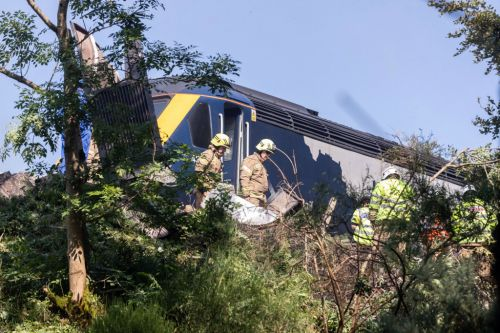 First pictures show derailed train that burst into flames 'killing driver'