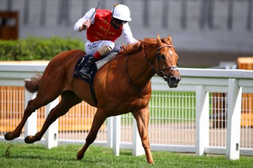 Golden Horde set for Earthlight rematch in Prix Maurice de Gheest while Supremacy and Nando Parrado also France-bound