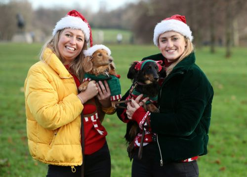 500 Sausage Dogs Dressed In Santa Outfits Had A Meetup And It's The Best Thing You'll See Today