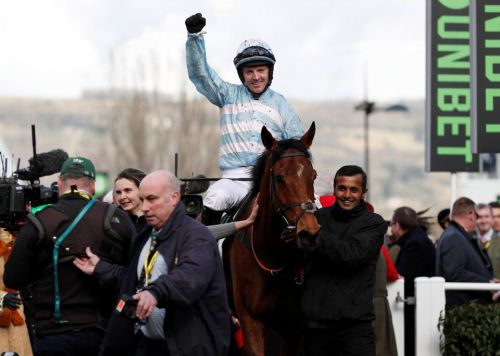 Who is Noel Fehily? Cheltenham Festival-winning jockey retires after final Newbury rides today