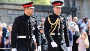 Prince William and Prince Harry have agreed to split Diana's memorial fund proceeds