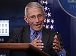 Fauci compares coronavirus death toll among black Americans to AIDS pandemic
