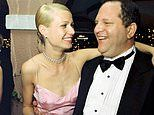 Harvey Weinstein, the A-listers he loved to party with. and a culture of fear