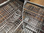 Liesl Elizabeth shares a little-known feature in dishwasher for cleaning cutlery