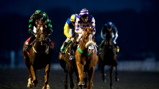 Through The Card: Kempton, Monday 17 February