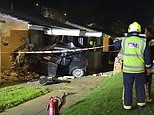Drink-driver hits dog walker and kills his dog before ploughing car into side of bungalow