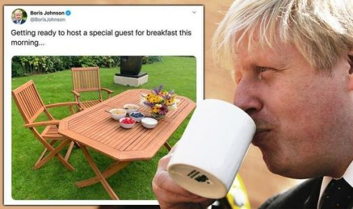 Boris Johnson excites voters with mysterious 'special' guest - 'Who is it?'