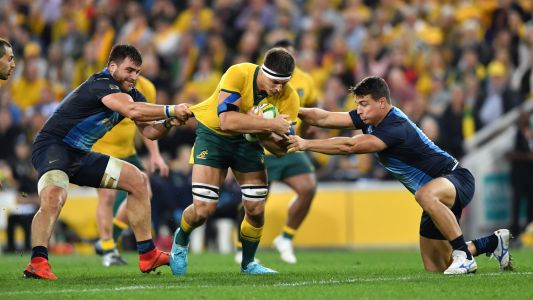 Australia vs Argentina live stream: how to watch the final round of the 2020 Tri Nations rugby