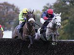 Robin Goodfellow's racing tips: Best bets for Saturday, November 16