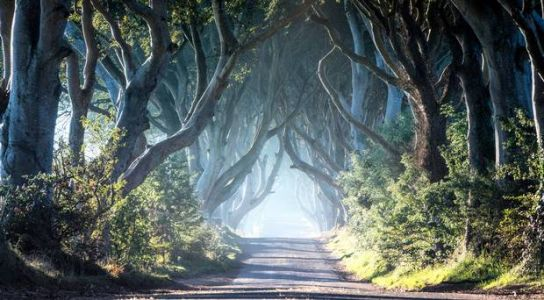Game of Thrones and Troubles tours ranked in Tripadvisor's top UK travel experiences
