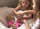 Chilled-out cat called Carrot lounges in a tiny robe as sisters aged three and five pamper her