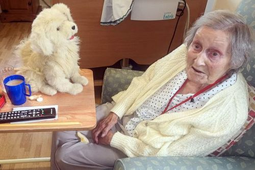 Robot pets cheer up anxious care home pensioners - and some think they're real
