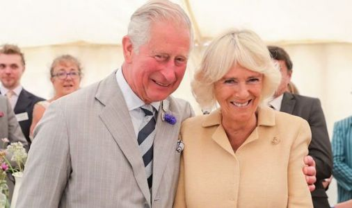 Royal delight: Camilla's romantic surprise for Prince Charles' 71st birthday in India