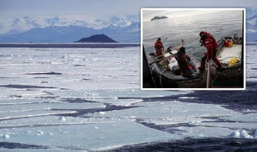 Antarctica shock: How40 million-year-old 'colossus' animal stunned scientists