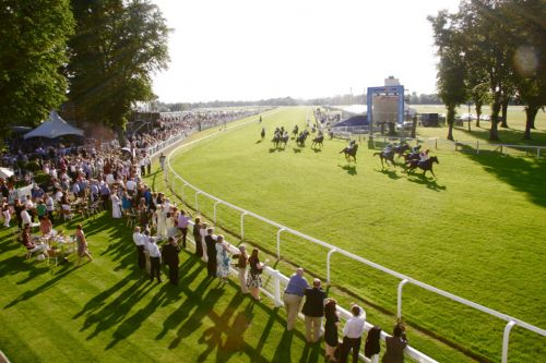 Templegate's racing tips: Ayr, Cartmel, Windsor and Beverley - Templegate's betting preview for racing on Monday, July 22
