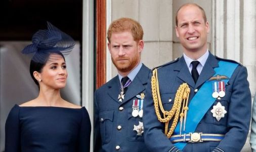 Prince William and Harry's bond DESTROYED by Meghan wedding - historian exposes rift