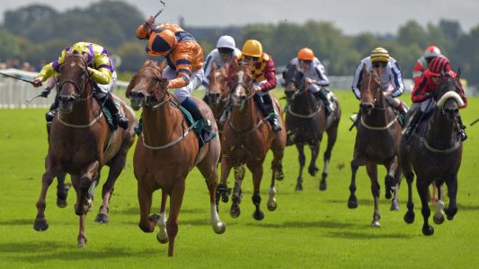 Horse Racing Tips: Timeform's best three bets from Ripon and Stratford on Wednesday