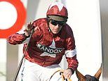 Sportsmail's Virtual Grand National Preview: Tiger Roll is the heavy favourite