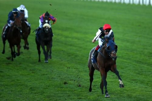 Horse racing tips: Champions Stakes trends - we help you find the winner of the Ascot contest live on ITV this Saturday